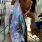 Pescare nel mare della Città Bella